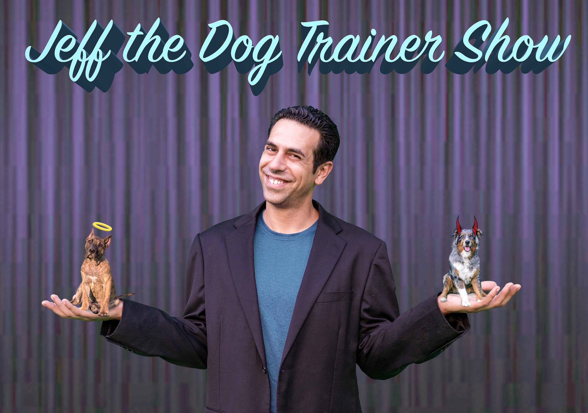 Jeff Feuerwerker AKA Jeff The Dog Trainer JTDT