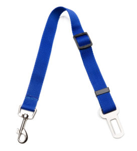 Dog Seat Belt on white background